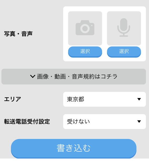 写真、音声、転送電話の設定画面