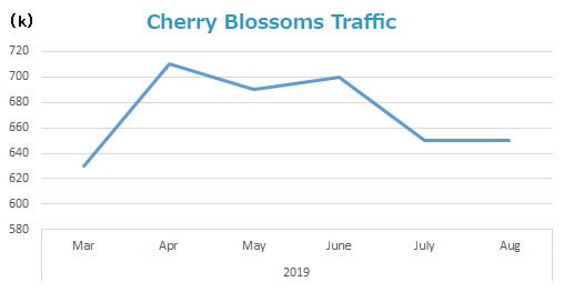 cherry-blossoms-traffic