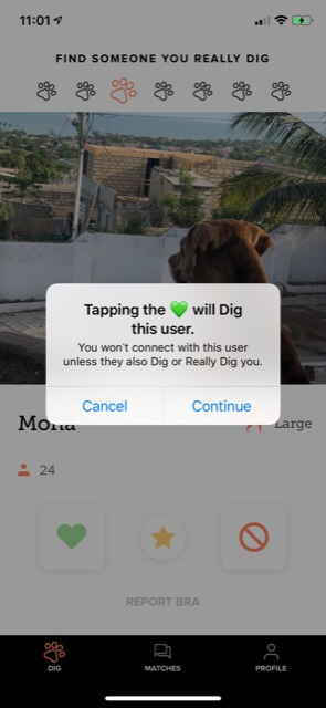 dig-really-button