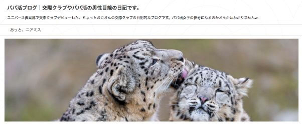 papakatsu-blog7